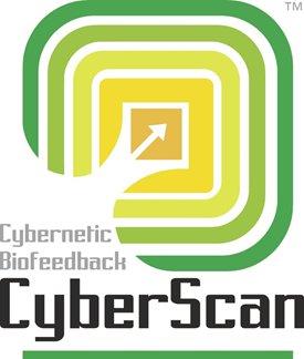 cyberscan2